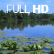 Lake Scene Vol.1 - VideoHive Item for Sale