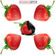 Strawberries - GraphicRiver Item for Sale