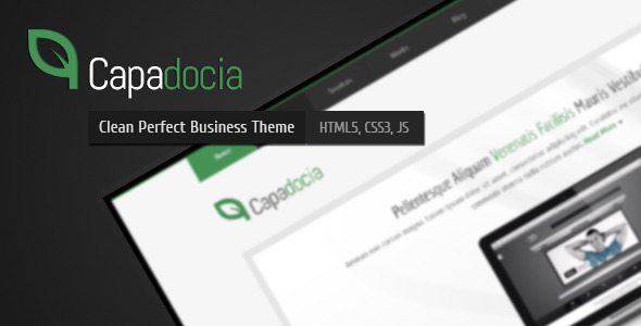 Capadocia - Perfect Clean Business Corporate Theme - Capadocia Theme