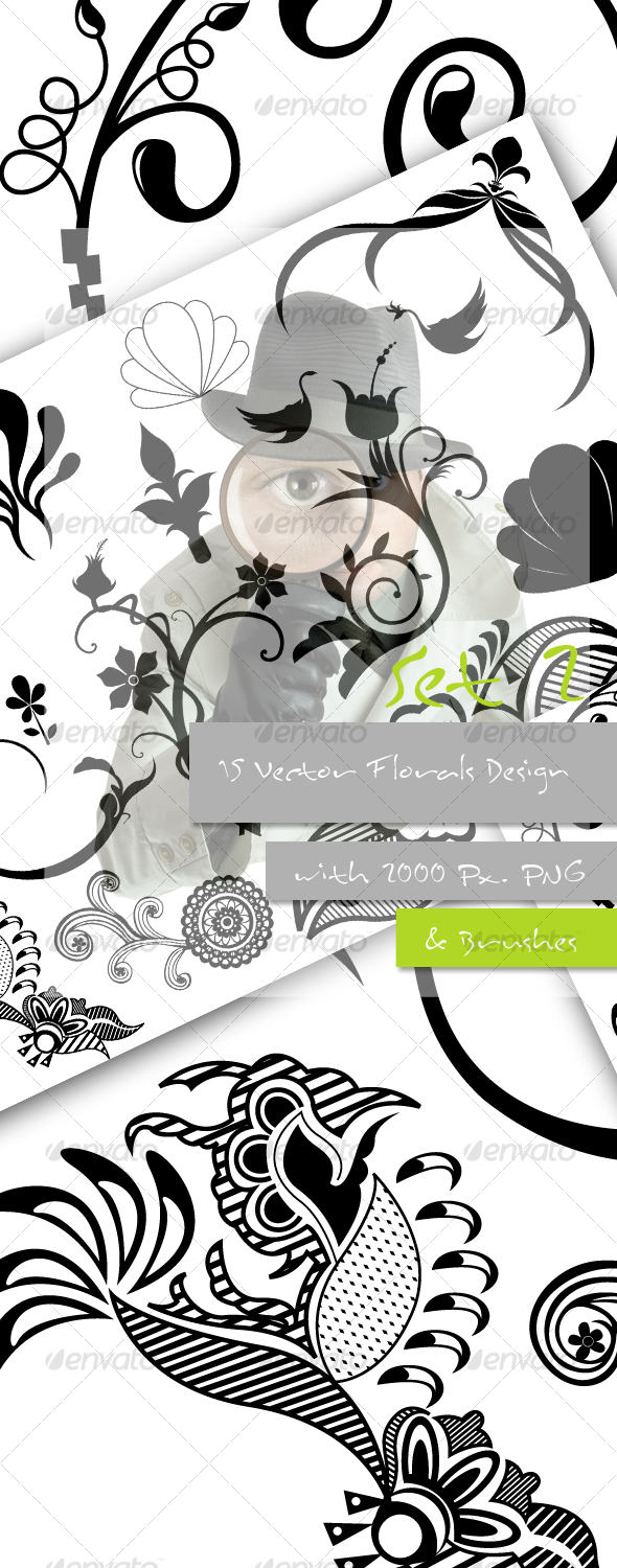 GraphicRiver Flourish Vectors Pictures and Brushes 88673