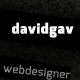 davidgav