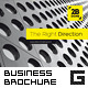Professional Business Brochure - GraphicRiver Item for Sale