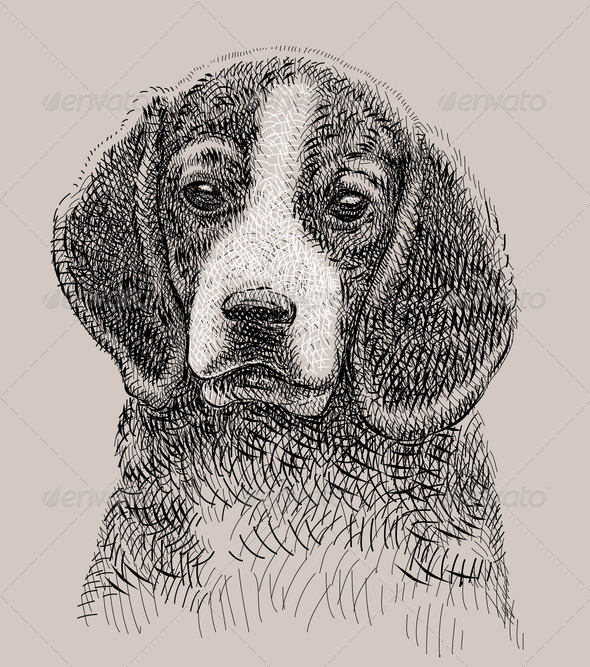Dog Artistic Drawing - Animals Characters
