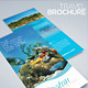 Travel and Tourism Brochure - Caribbean Beach - GraphicRiver Item for Sale