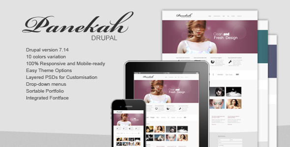 Panekah Best responsive drupal theme,best free drupal theme, best drupal 7 theme,Premium drupal theme,drupal theme,best free drupal theme,free business drupal theme,creative drupal theme, best drupal developers,best drupal website,best mobile website design,best drupal designs