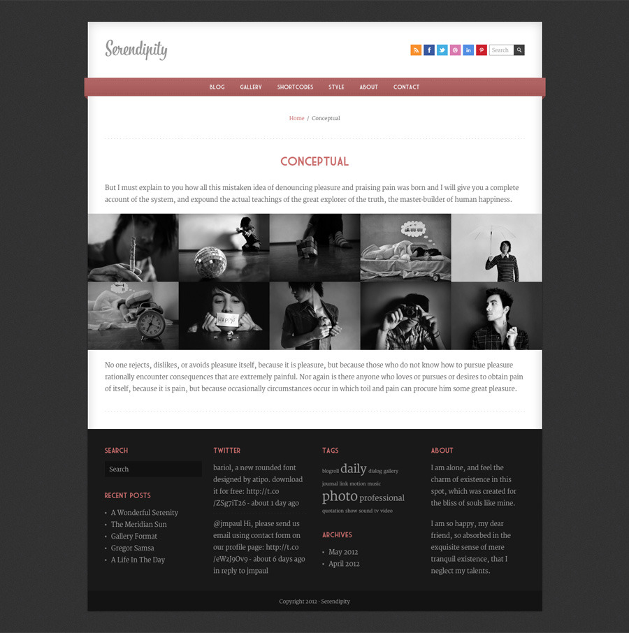 Serendipity - Fully Responsive Wordpress Blog