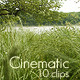 Forest Rain Bundle 2 - VideoHive Item for Sale
