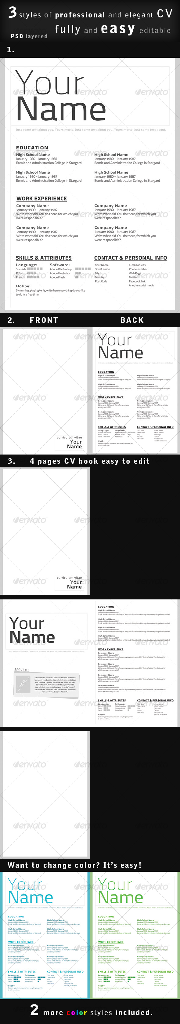 GraphicRiver Professional CV Resume in 3 styles 90201