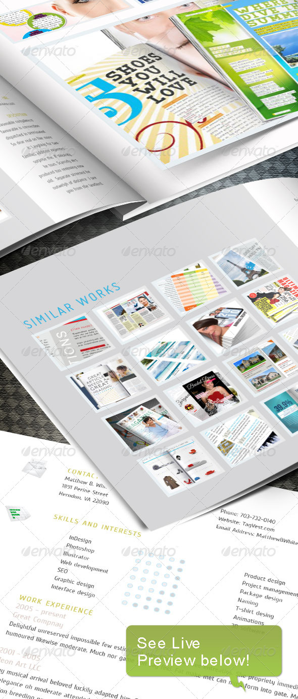 GraphicRiver Web Portfoio InDesign template 236536