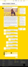 04_lemon.__thumbnail