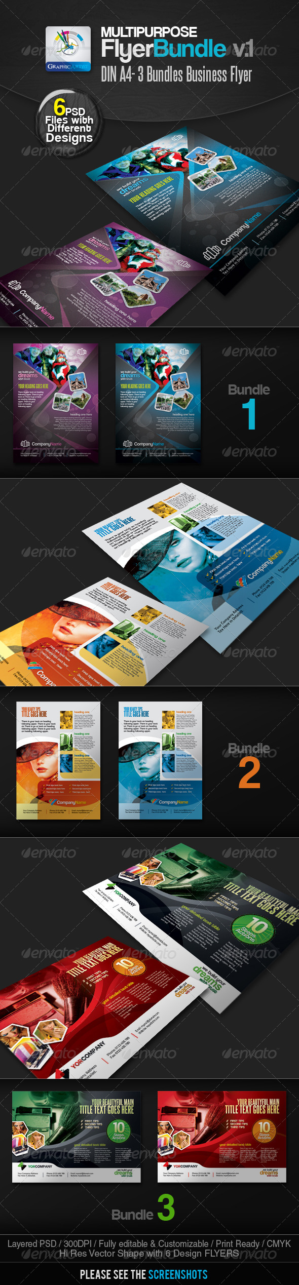 GraphicRiver Multipurpose Business Flyer Pack v.1 2502513