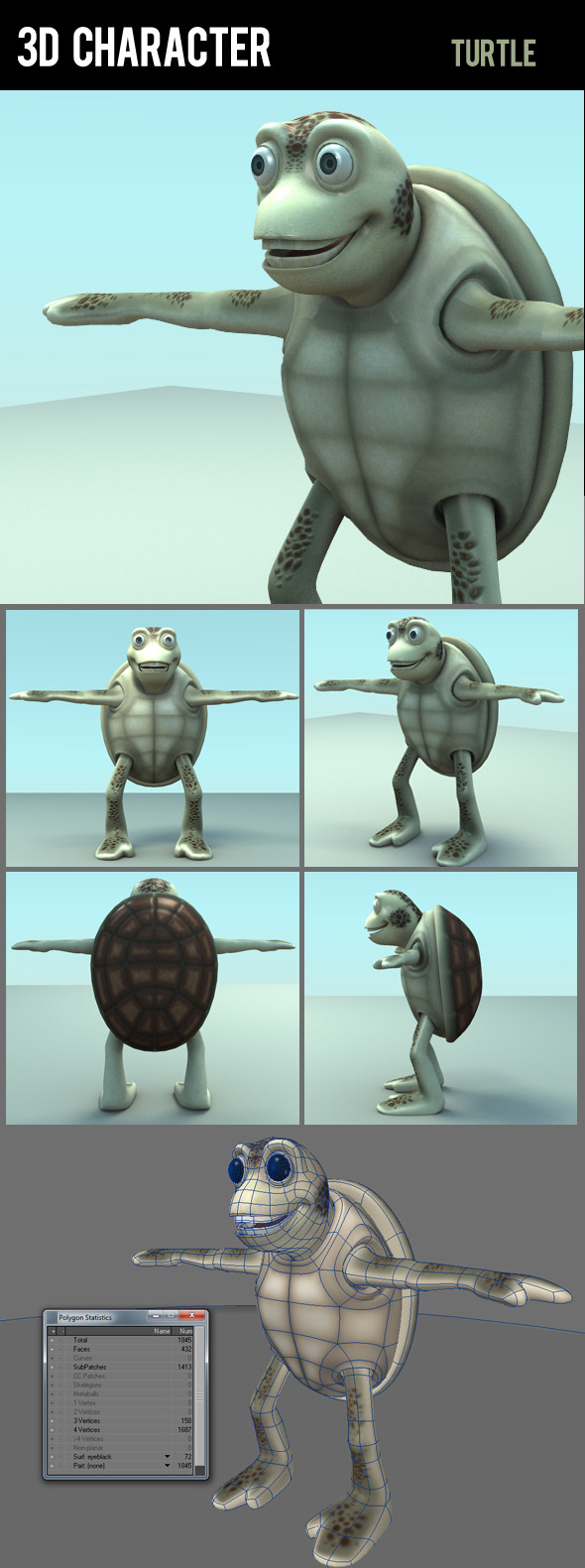 3D character turtle
