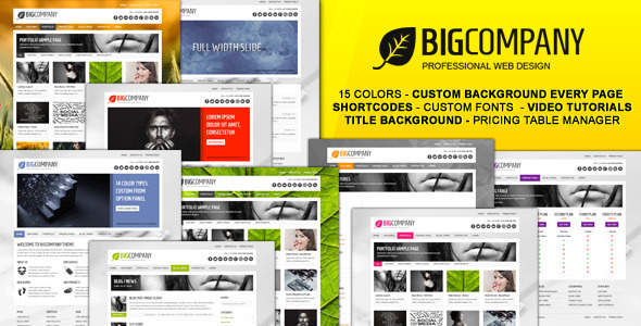 ThemeForest Big Company Business & Portfolio WordPress Theme 1586619