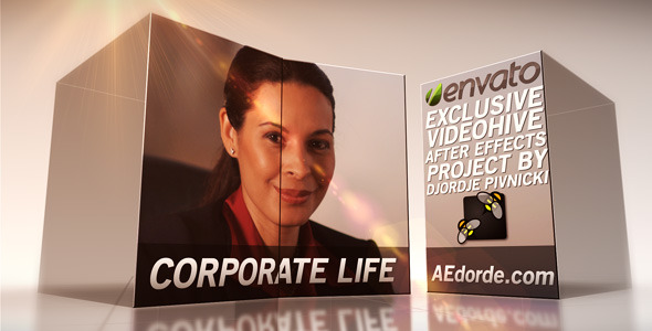 After Effects Project - VideoHive Corporate Life 2531063