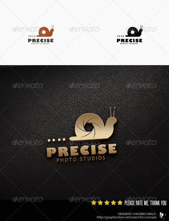 Precise Photo Studio Logo Template - Abstract Logo Templates