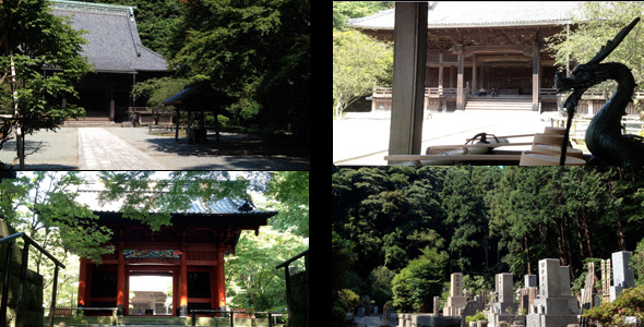 Japanese Temple And Cemetery 5-Pack
