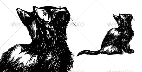 Hand drawn cat looking up - Animals Characters