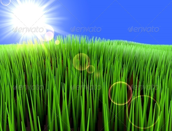 Nature - Stock Photo - Images