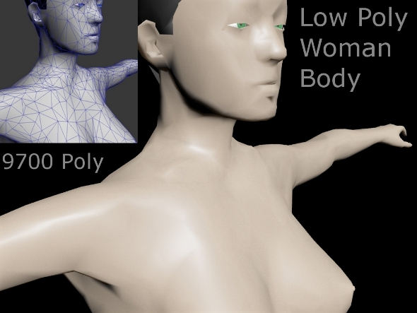 3DOcean Low Poly Woman Body 2539871