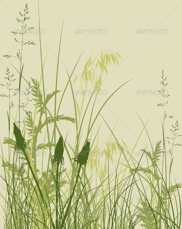 Green Grass Background - Flowers & Plants Nature