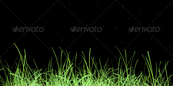 Green grass meadow - Stock Photo - Images