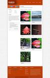 5_portfolio.__thumbnail