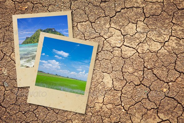Dry cracked earth - Stock Photo - Images