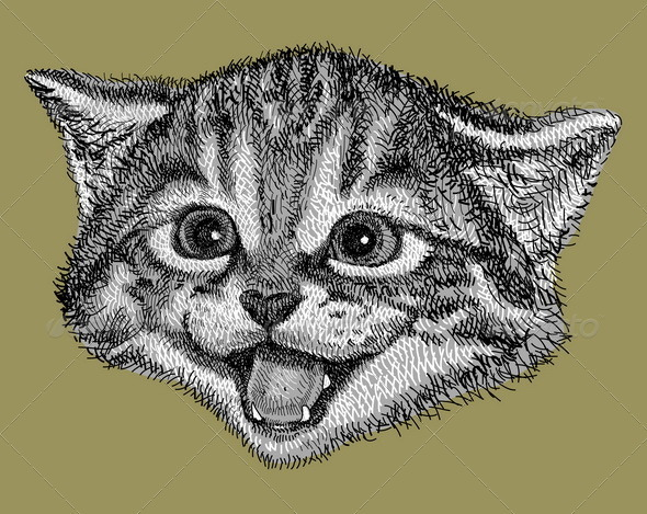 Cat drawing vector - Animals Characters