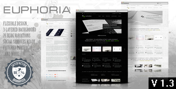 Euphoria - Wordpress Premium Theme - Corporate WordPress