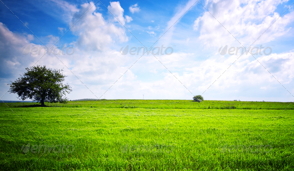 Eco green landscape - Stock Photo - Images