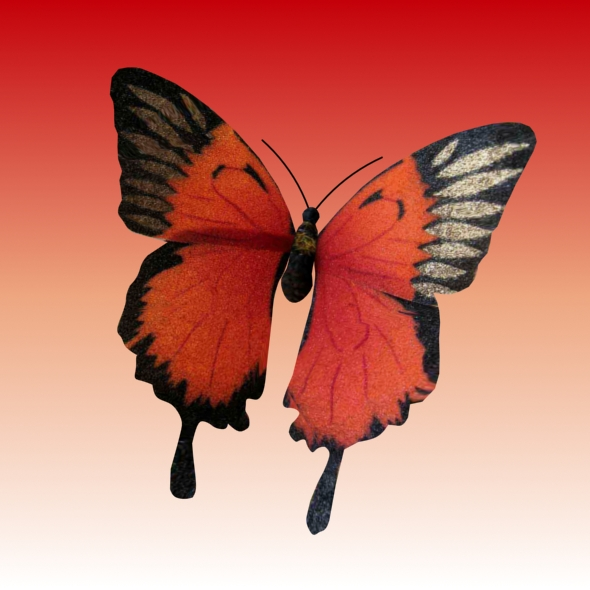 3DOcean Animated Butterfly loop 93157
