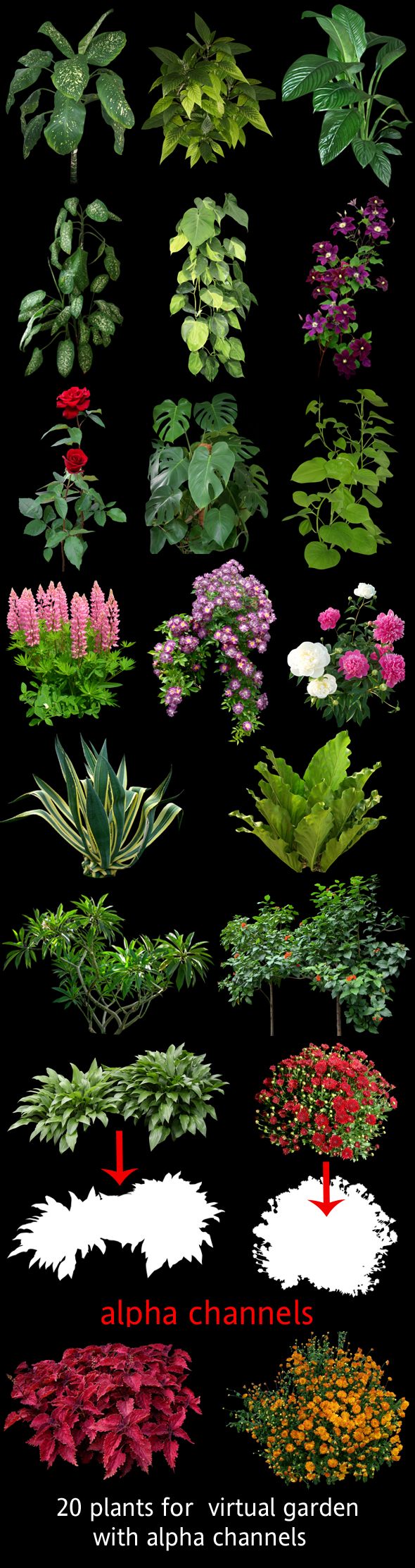 Plants for 3D scenes - 3DOcean Item for Sale