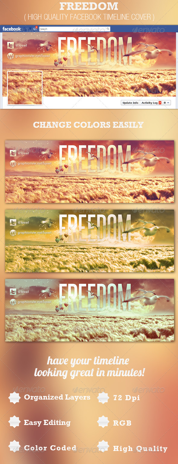 GraphicRiver Freedom Facebook Timeline Cover Template 2567626