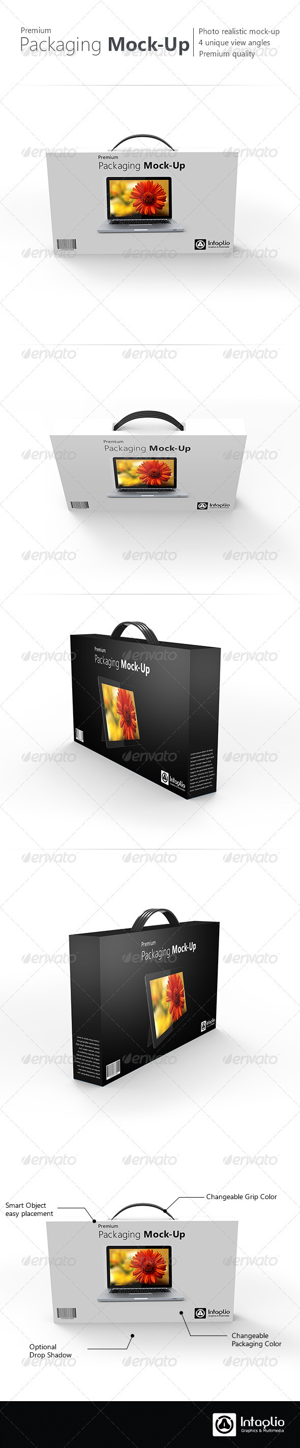GraphicRiver Premium Packaging Mock-Up 2580752