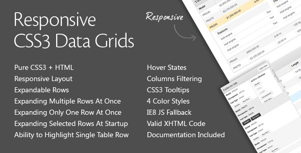 CodeCanyon Responsive CSS3 Data Grids 2581249