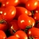 Sweet Cherry Tomato 2 - VideoHive Item for Sale