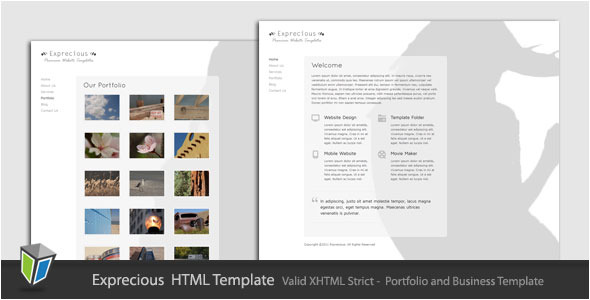 Exprecious - Portfolio and Business HTML Template