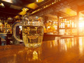 Cold Beer in a Pub Counter - PhotoDune Item for Sale