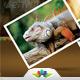 World Safari Travel Agency Flyer - GraphicRiver Item for Sale
