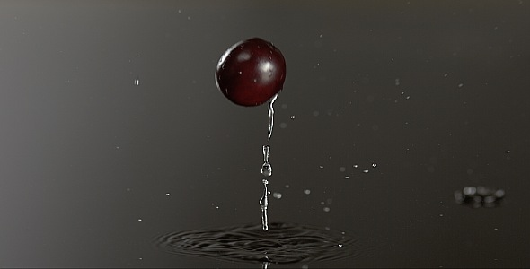 VideoHive Cranberry is Falling on a Wet Surface 9832244