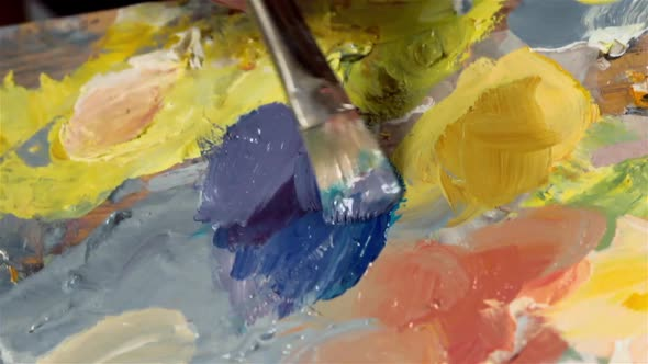 Download Palette With Oil Paints nulled download