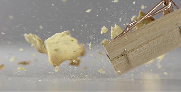 VideoHive Cracker is Falling on a Mousetrap 9842982