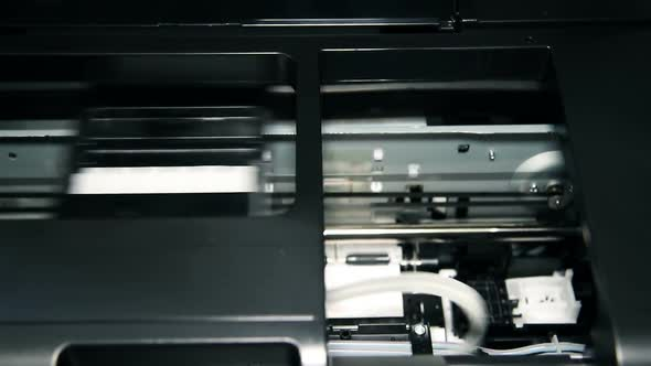 Download Printer Printing Photo nulled download