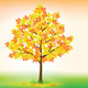 Download Vector Autumn maple