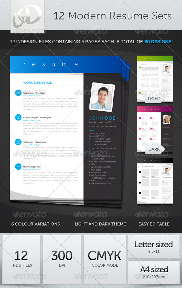 GraphicRiver 12 Modern Resume Sets 2599252