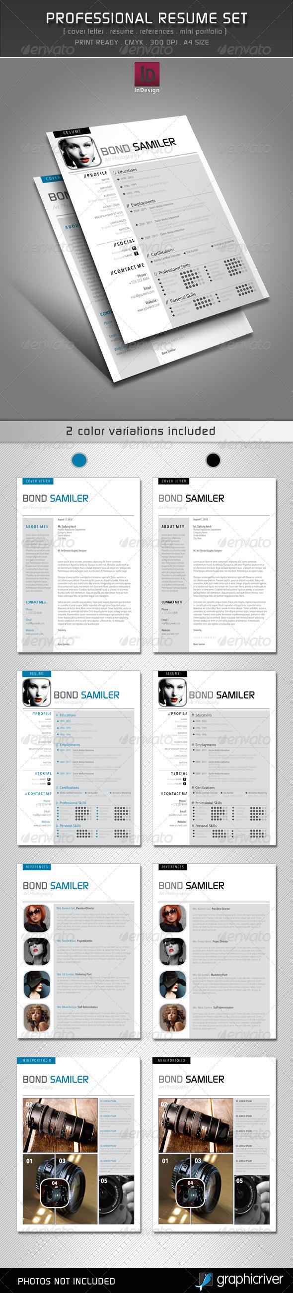 GraphicRiver Professional Resume Set 2601914