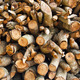 Longan logs in storage. - PhotoDune Item for Sale