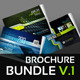 Corporate Brochure/Catalogue Bundles v.2