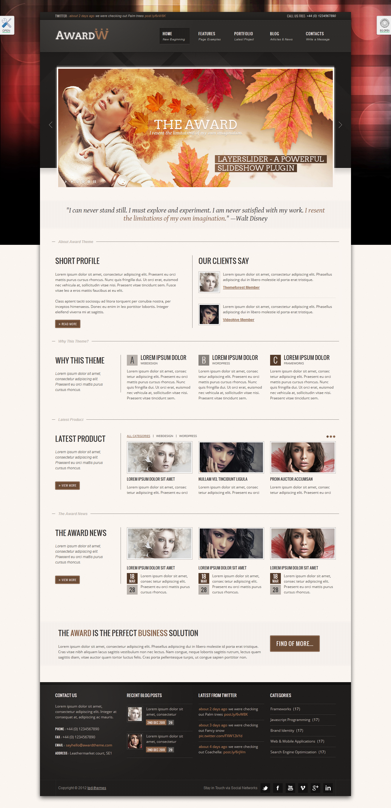 "Award Premium Wordpress Theme 21 in 1 - index.html skin ""default"", theme style ""boxed"", background style ""dohed style 2-1"""
