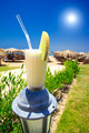 Pina Colada,blue sun and sunny beach. - PhotoDune Item for Sale